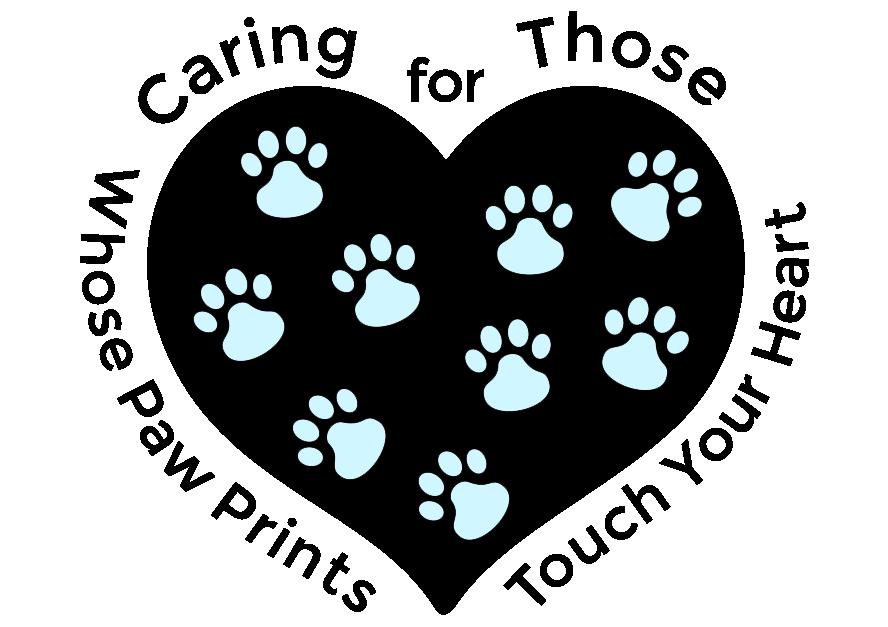 Veterinarian In Selma Nc For Pet S Sake Animal Hospital